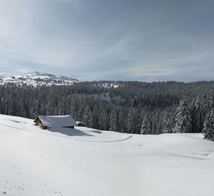 Manigod and Les Saisies: 2  favourite Ski resort!
